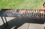 Shish-kabobs on Mangal